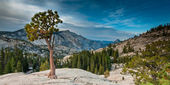 Olmsted point yosemite — Stock Photo