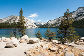 Yosemite national park lago tenaya — Foto Stock