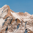 Wetterhorn summit from Grindelwald — Stock Photo #2466086