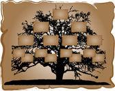 Genealogical tree — Stock Vector