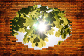 Hole in brick wall and viev on nature — Stock Photo