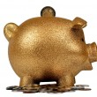 Gold Piggy Bank with Coins — Stock Photo