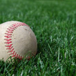 Baseball on Grass Offcenter - Stock Photo