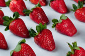 Strawberries in a row — Stock Photo