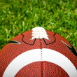 American Football On Grass — 图库照片