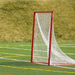 Stock Photo: Lacrosse Net