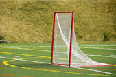 Lacrosse Net — Stock Photo