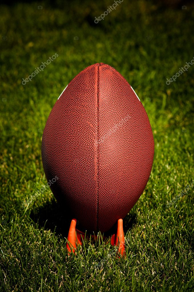 American Football on a tee seen from the back  Stock Photo #2372268