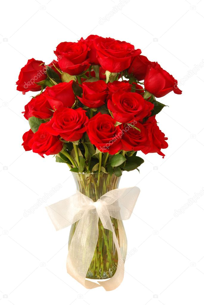 3 Dozen Red Roses in a Vase Isolated — Stock Photo #2372392