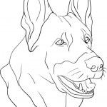 Dog head — Stock Vector #2299577