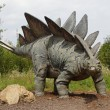Stock Photo: Stegosaurus