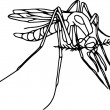 Royalty-Free Stock Vector Image: Mosquito