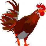 Cock — Stock Vector #2332734