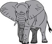 Elefant — Stock Vector