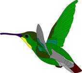 Kolibry — Wektor stockowy