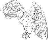 Bald eagle — Stock Vector