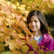 Girl standing amongst autumn leaves - Stock Photo