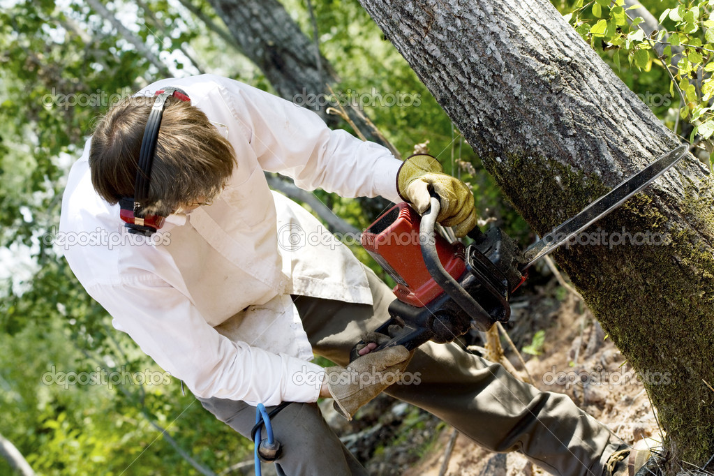 Man cutting down a tree with a chainsaw — Stock Photo #2632814