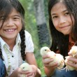 Children holding pet chicks — Stock Photo