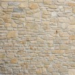 Stone wall — Stock Photo #2656672