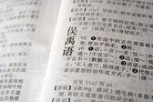 «язык» на китайском языке — Стоковое фото