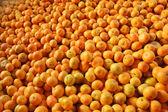 Large Group of reshness Oranges — Stock Photo