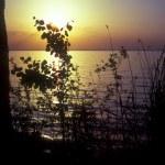 Sunset on lake. — Stock Photo #2369525