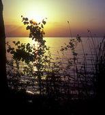 Sunset on lake. — Stock Photo