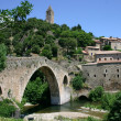 France Languedoc Olargues Pont de diable — Stock Photo