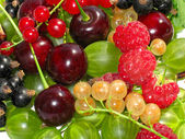 Berries cherry, currant, gooseberry. — Stock Photo