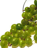 Gooseberry. Dessert. — Stock Photo