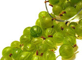 Green gooseberry. — Stock Photo