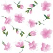 Stock Vector: Pink flowers on white.