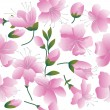 Stock Vector: Pink flowers on white background.