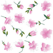 Pink flowers on white. — Stock Vector