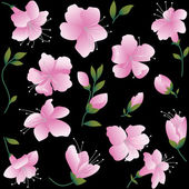 Pink flowers on black background. — Stock Vector
