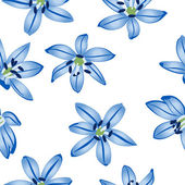 Blue flowers on white background. — Stock Vector