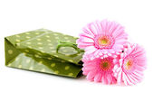 Green shopping bag with pink gerber — Stock Photo