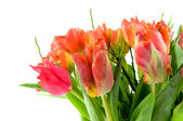 Bouquet red and orange tulips — Stock Photo