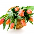 Wooden basket with orange tulips — Stock Photo #2420018