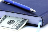 Diary, pen and US dollar isolated — Stock Photo