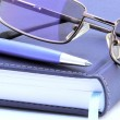 Stock Photo: Diary, pen and reading glasses
