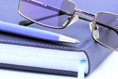 Diary, pen and reading glasses — Stock Photo