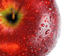 Red apple covered with drops of water — Stock Photo