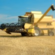 Yellow modern combine on a field at the end of summer — Stock Photo