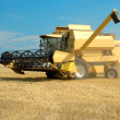 Yellow modern combine on a field at the end of summer — Stock Photo #2392537