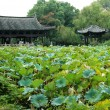 Ancient house with pond in china — Stock Photo