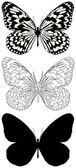 Kelebek — Stok Vektör