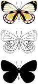 Motýla — Stock vektor