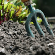 Urban Gardening - Stock Photo